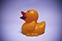 Half-a-Duck