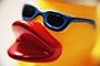 Porno Duck