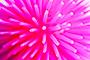 Rubber Urchin